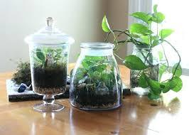 grow light indoor garden indoor herb garden with light indoor herb garden with light best of