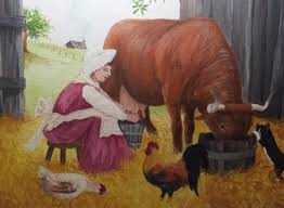 hinesite devons heritage cattle that work milk