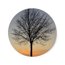 small tree stickers zazzle