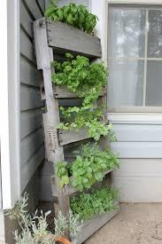 32 best gardening ideas images on pinterest gardening