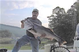 Arkansas lakes images Arkansas fishing lakes and rivers JPG