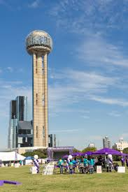 the best pumpkin patches in dallas fort worth dallas socials