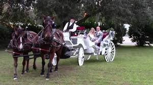saxon manor wedding horse drawn carriage country wedding in