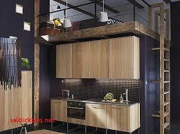 cuisine pour petit appartement idee deco appartement moderne pour idees de deco de cuisine