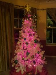 white tree with pink lights rainforest islands ferry