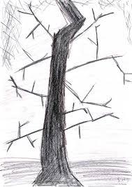 in the trees ʇıqɹouıʇuǝɔuıʌ