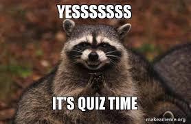 Quiz Meme - yesssssss it s quiz time evil plotting raccoon make a meme