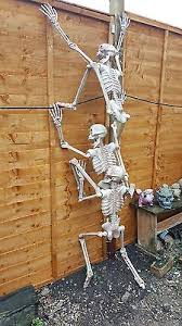 poseable skeleton 3ft 6 inch size poseable skeleton decoration