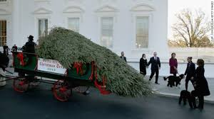 obama welcomes the white house tree cnn