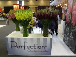 Flower Wholesale Proflora 2017 Flower Wholesale Festival Colombia