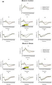 brain sciences free full text acute stress dysregulates the