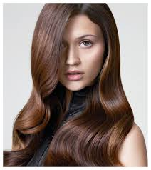 hair color formula hair color ideas for chocolate brown women long hairstyles colour