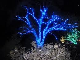 Landscape Led Lights Ls Lighting Dazzling Garden Lights Decoration