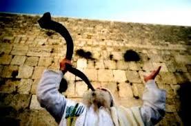 shofar from israel think israel