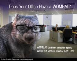 Wombat Memes - does your office have a wombat 皓 add design