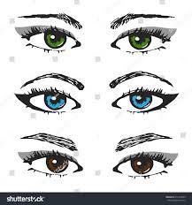 set female eye sketchesdifferent types eyebrows stock vector