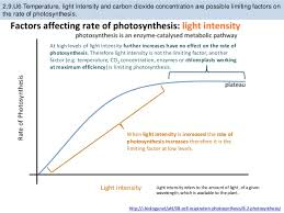 Lab Bench Photosynthesis Bioknowledgy 2 9 Photosynthesis