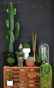 921 best decorating with plants images on pinterest potted