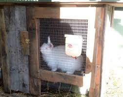 Rabbit Hutch Plastic 12 Free Rabbit Hutch Plans And Designs