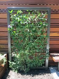 taproot garden design u0026 fine gardening