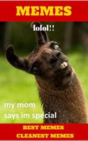 Funny Funny Memes - memes u funny hilarious funny memes extra clean xl memes memes
