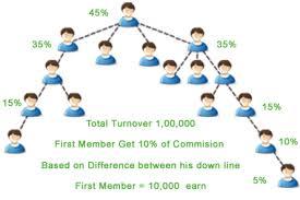 pv plan differential pv bv plan mlm software development company in
