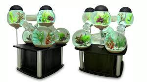aquarium fish ideas 2017 creative home design fish tank and