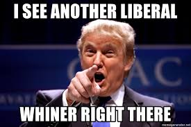 Whiner Meme - i see another liberal whiner right there donald trump bday meme