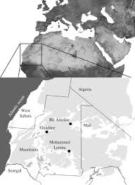 songbird migration across the sahara the non stop hypothesis