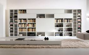 seamless modern home library with modular shelving also display