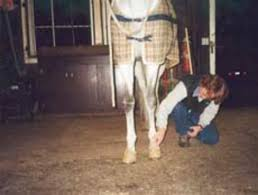 Horn And Hoof Flag 7 Tips To Horse Hoof Health Usrider