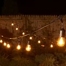 edison light string string lights you ll wayfair