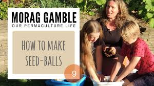 how make self watering pots morag gamble our permaculture how make seedballs visit morag gamble blog www permaculture life blogspot com more information natural way seed landscape restore degraded