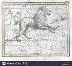 Colors Of The Zodiac by Leo Is One Of The Constellations Of The Zodiac Its Name Is Latin