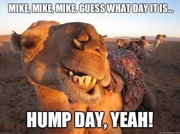 Hump Day Camel Meme - mike mike mike guess what day it is hump day yeah cam
