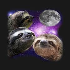 Sloth Meme Shirt - sloth shirt three wolves moon parody meme shirt three wolf moon