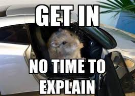 Gtr Meme - car photos and video yes this hamster is in a gt r a bro ham