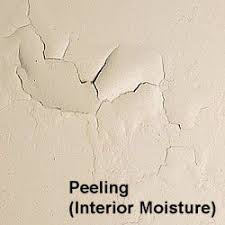 Paint Peeling Off Interior Walls Common Exterior House Paint Problems And To To Repair Them