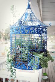 articles with decor bird cages for sale durban tag decorated bird