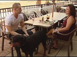Dog Patio Doggy Dining Do U0027s For Patio Season Kare11 Com