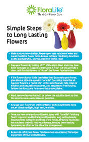 All Natural Flower Food Floralife What Is Flower Care