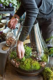 342 best diy gardening images on pinterest indoor gardening