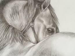 horse two drawing by jimmie shealey