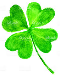 fourleaf clover on white background in watercolor stock vector art