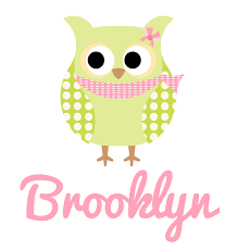 s name green pink owl burp cloth personalised products