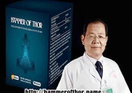 distributorthorshammer com klinikobatindonesia com agen resmi