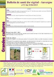 chambre agriculture auvergne bulletin de santé du végétal auvergne n 29 chambre d agriculture