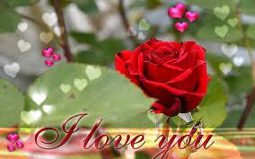 imagenes de i love you so much love you ecard