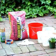 How To Make Planters by How To Make Concrete Planters Hometalk