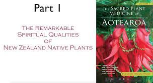 native plant centre the sacred plant medicine of aotearoa part 1 youtube